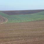 Banalisation des paysages 3