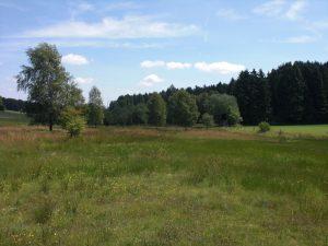 Wilwerdange - Conzefenn (LU0001033)